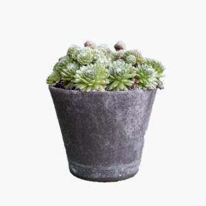 julie-antik-gra-lerkruka-10cm
