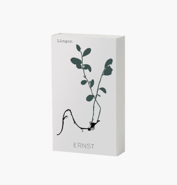 tandsticksask-med-lingon-som-motiv-p-frn.ernst-design-med-långa-tändstickor