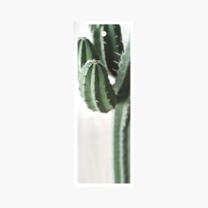 kort med kaktus pa fran cardstore