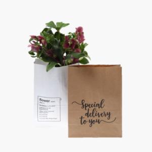 lyxpse-med-text-perfekt-till-en-blomma-eller-annan-passande-gva-nilssonsblommor.se