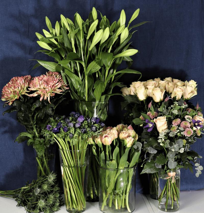 Handla blommor, blomsterbuketter och snittblommor online eller i var butik i nassjo-Nilssonsblommor.se