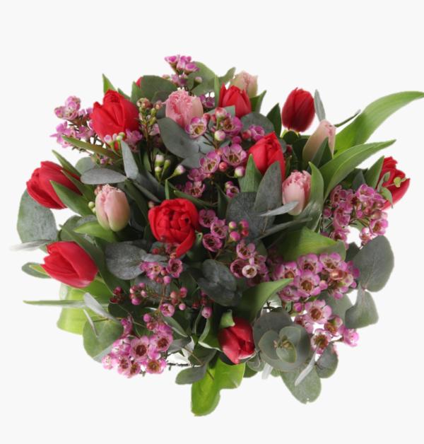karlek-Rosa och roda tulpaner, vaxblomma, eucalyptus
