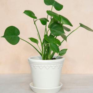 Keramik kruka copenhagen vit fran Bergs Potter
