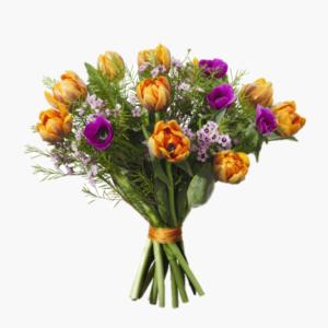 Fargstark var, en blomsterbukett som moter varens harligt starka farger med fargsprakande tulpaner, anemoner och vaxblomma.
